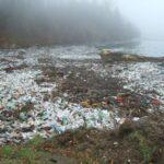 poluarea Tisa someş