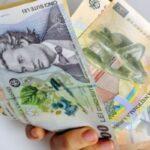 bugetarii angajaţii de lux