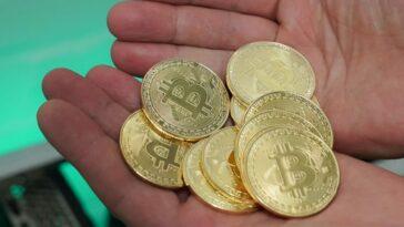 bitcoin miliardar roman