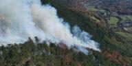 incendiu de padure austria