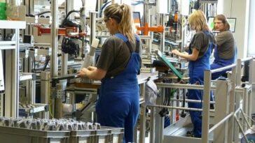 muncitori ungaria